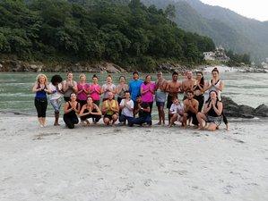28 Days Vinyasa Yoga Teacher Training Course in Rishikesh, India