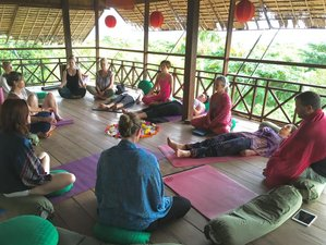5 Days Journey to the Soul Meditation and Yoga Retreat in Coromandel Peninsula, New Zealand