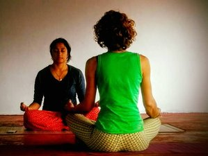 31 Days 200-Hour Yoga Teacher Training in India