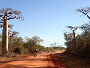 12 Days The Baobabs Tracks, Madagascar's Must-Do Guided Enduro Motorbike Trip