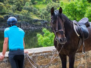 6 Day Sierra Norte Horse Riding Tour in Madrid