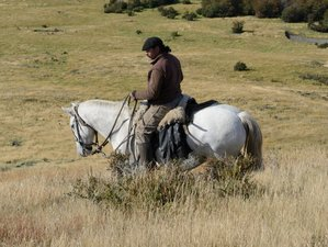 4 Day Estancia Bahia Esperanza Private Reserve Horseback Riding Holiday in Puerto Natales, Patagonia