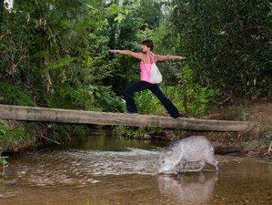 8 Tage Ökologische und Kulturelle Immersion Surf und Yoga Retreat in Ubatuba, Brasilien