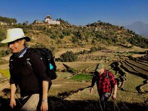14 Days Meditation and Yoga Holiday Pilgrimage in Kathmandu Valley, Nepal