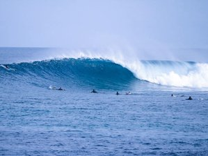 8 Days Amazing and Affordable Surf Trip with Half-Board and Boat Trips in Himmafushi, Maldives