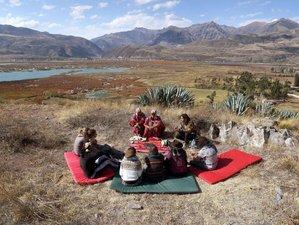 4 Day Ayahuasca Retreat in Cusco Mountains with Native Shipibo-Konibo Shamans