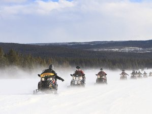 4 Day Guided Stay and Play Snowmobile Package in Central Newfoundland