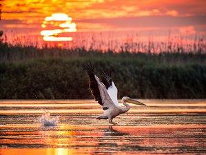 4 Days Danube Delta Safari in Romania