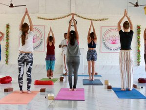 28 Day 300-hour Advanced Yoga Teacher Training in Goa