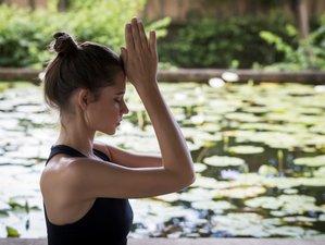 5 Day Emotional Balance and Mind Training Yoga Retreat in Nusa Dua, Bali