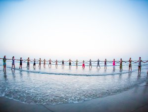 9 Month Self-Paced Soundmoves 200-Hour Online Yoga Teacher Training