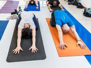 28 Days 200-Hour Hatha Vinyasa Yoga Teacher Training in Rishikesh, India