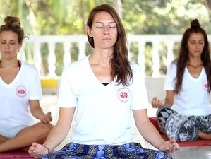 13 Days 100hr Yoga and Meditation Teacher Training in Himalayas