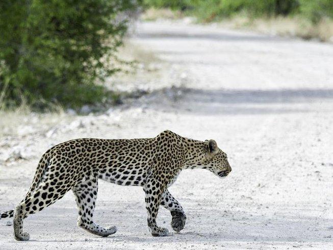 10 Days Camping Safari in Namibia