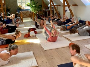 6 Day Alexander Technique and Yoga Retreat in Højby, Zealand