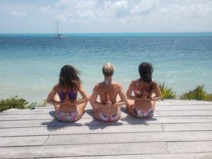 21 Tage 200-Stunden Hot Yoga und Achtsamkeit Meditationslehrer Ausbildung in San Diego