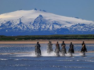 8 Day Intensive Horse Riding with Breathtaking Trails in Western Region, Iceland