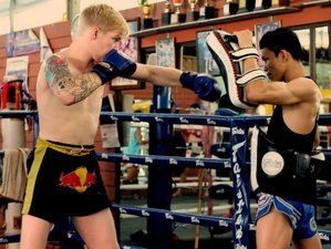 3 Months Advanced Training at Chiang Mai Muay Thai Gym