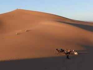 12 días de safari tour por lo mejor de Marruecos