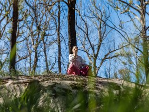 3 Day Weekend Wellbeing Retreat in Ebor, New South Wales