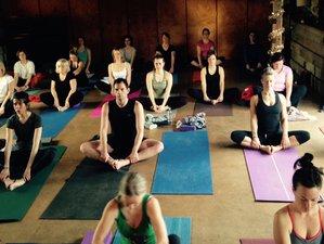 4 Tage May Bank Urlaub Yoga Retreat in Großbritannien