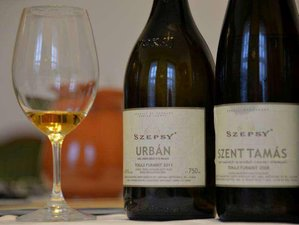 5 Day Classic Wine and Culinary Tour in Tokaj and Eger, Hungary