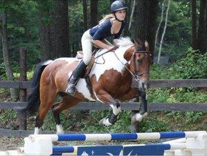 27 Day Equestrian Summer Camp for Girls in Newbury, Vermont
