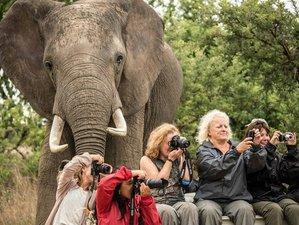 4 Days Safari in South Luangwa National Park, Zambia