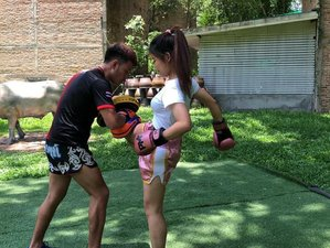 8 Day Muay Thai Training for Beginners in the Beautiful San Pa Tong, Chiang Mai