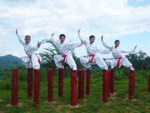 4 Years Wing Chun, Tai Chi & Kung Fu Vacation in China
