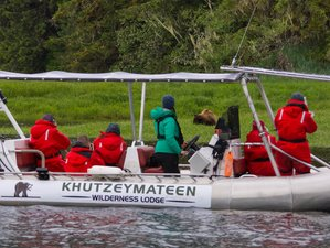 4 Day Khutzeymateen Grizzly Bear Sanctuary and Wildlife Tour in British Columbia, Canada