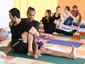 13 Days 100-Hour Yoga Teacher Training in Dharamsala, India