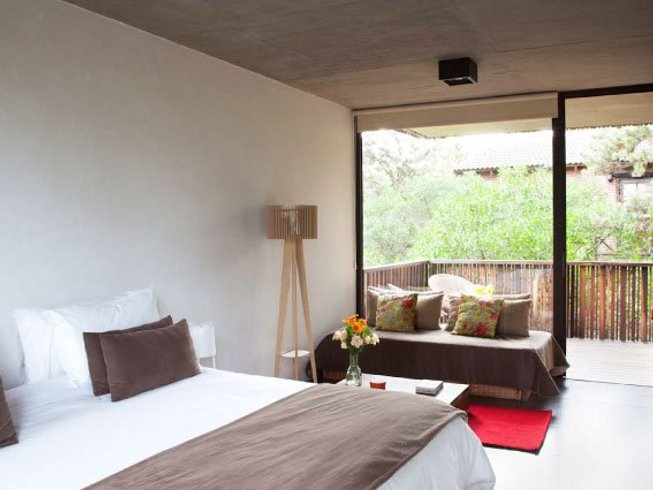 3 Days Detox and Yoga Retreat in Argentina