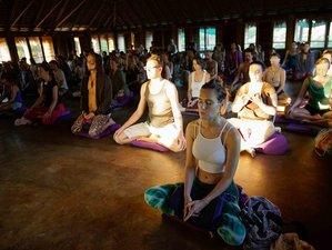 10 Day Heart Awakening Silent Meditation Retreat
