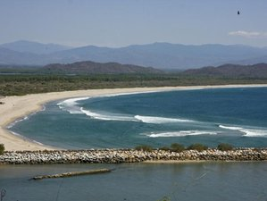 7 Day Amazing Island Surf Retreat in Oaxaca