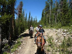 7 Day Dude Ranch Vacation in Saratoga, Wyoming
