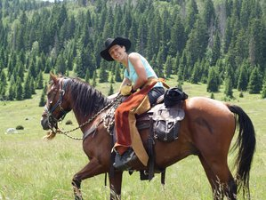 7 Days The Best Horse Riding Holiday in Velika Plana, Croatia