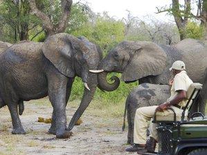 4 Days Sabi Sand Private Safari in South Africa
