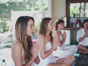 29 Day 300-Hour Vinyasa, Hatha, Ashtanga Yoga Teacher Training in Ubud, Bali