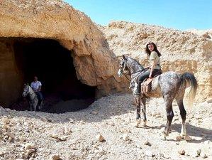 6 Days Multi Adventure Horse Riding Mini Break in Egypt