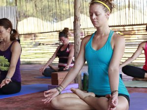 8 Days Silent Meditation and Yoga Retreat India