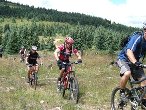 6 Days New Mexico Mountain Bike Adventure in USA