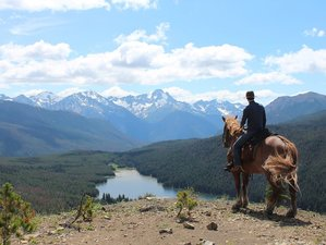 4 Day Wildlife Tracking on Horseback in South Chilcotin Mountains, British Columbia