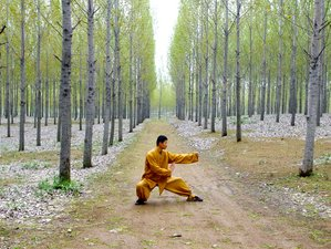 3 Months Shaolin Wushu Kung Fu School in Tengzhou City, China