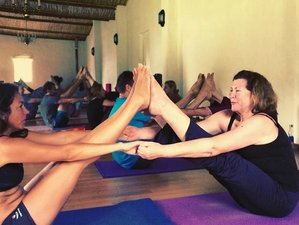 7 Days Detox, Meditation, and Yoga Retreat in Western Cape, South Africa