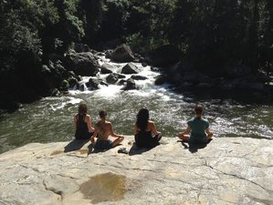 7 Days Shamanic Healing Journey Ayahuasca and Yoga Retreat Brazil