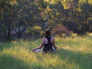 8 Days Yoga, Meditation and Cleanse Retreat in Margaret River, Australia