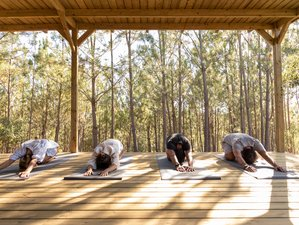 5 Day The Not So Serious Yoga Holiday in Cercal, Alentejo