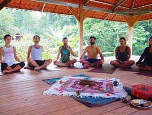 24 Days 200-Hour Yoga Teacher Training on the Magical Caribbean Coast of Costa Rica