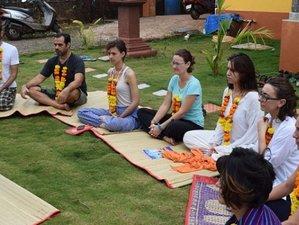 10 Days Upward Spiral Kundalini and Kriya Yoga Retreat and Short Yoga Teacher Training in Goa, India